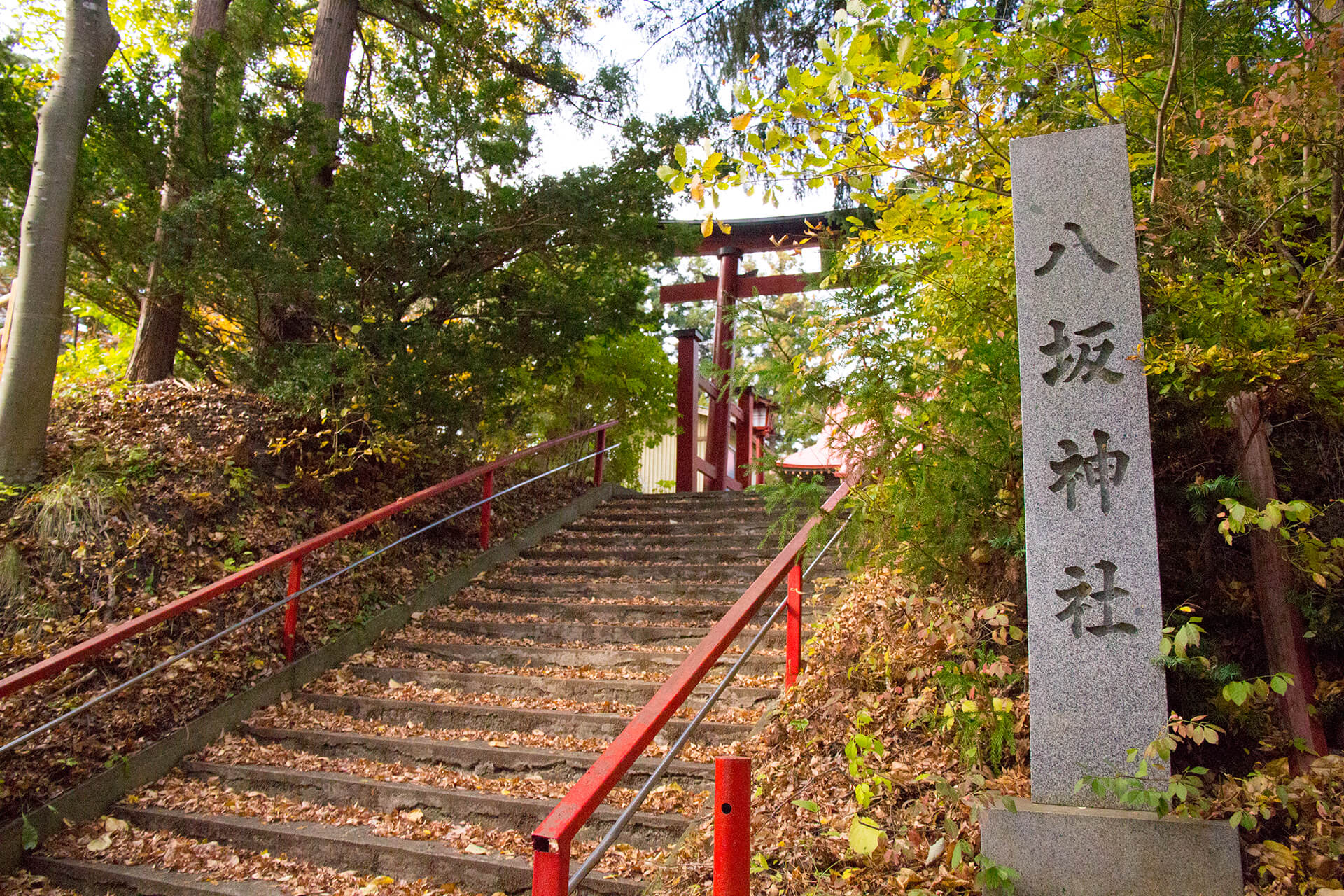 yasaka02