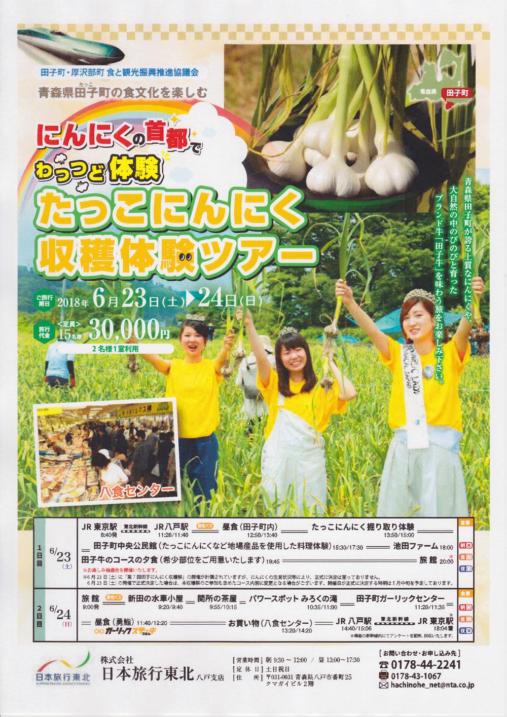 田子にんにく収穫体験ツアー2018 チラシ オモテ